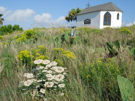 Click to enlarge image Blooming wildflowers surround both the cottage and the chapel. - SEA OATS COTTAGE - Gracious getaway for two!!