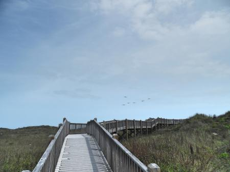 Click to enlarge image Walkover to the beach - Barefoot Dayz - Wonderful Studio Condo at Island Retreat